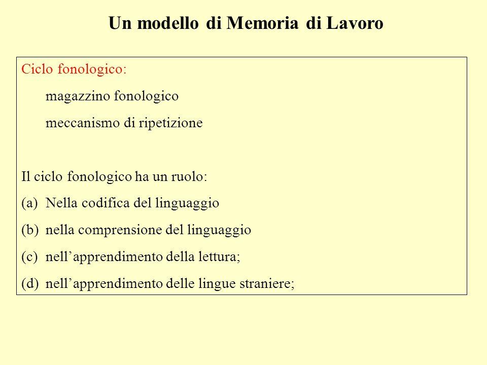 Un modello di Memoria di Lavoro Ciclo fonologico: magazzino fonologico meccanismo di ripetizione Il ciclo fonologico ha un ruolo: (a)Nella codifica de