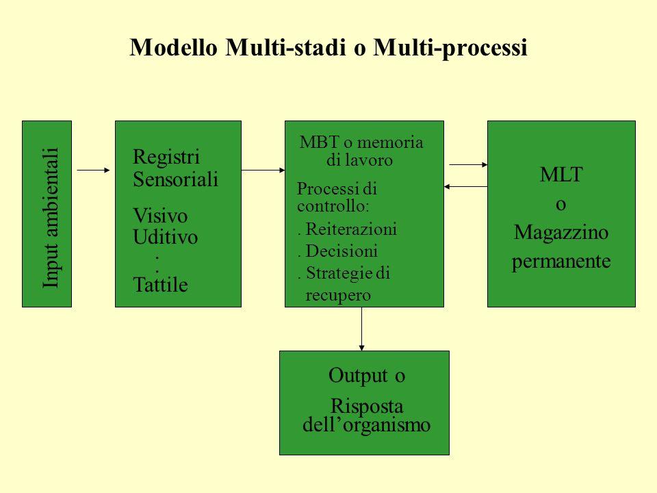 Modello Multi-stadi o Multi-processi Input ambientali Registri Sensoriali Visivo Uditivo. Tattile MBT o memoria di lavoro Processi di controllo:. Reit