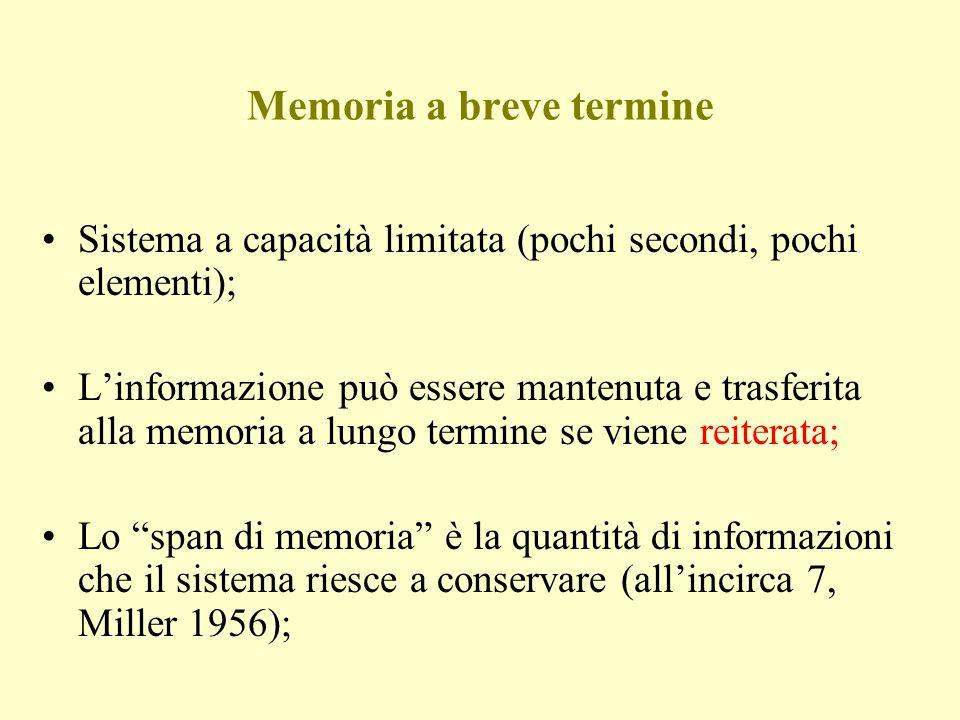 Memoria a breve termine Sistema a capacità limitata (pochi secondi, pochi elementi); Linformazione può essere mantenuta e trasferita alla memoria a lu