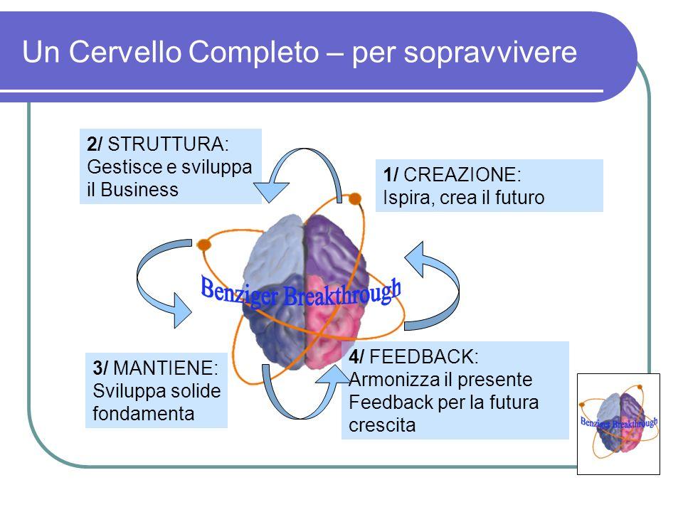 Un Cervello Completo – per sopravvivere 3/ MANTIENE: Sviluppa solide fondamenta 1/ CREAZIONE: Ispira, crea il futuro 2/ STRUTTURA: Gestisce e sviluppa