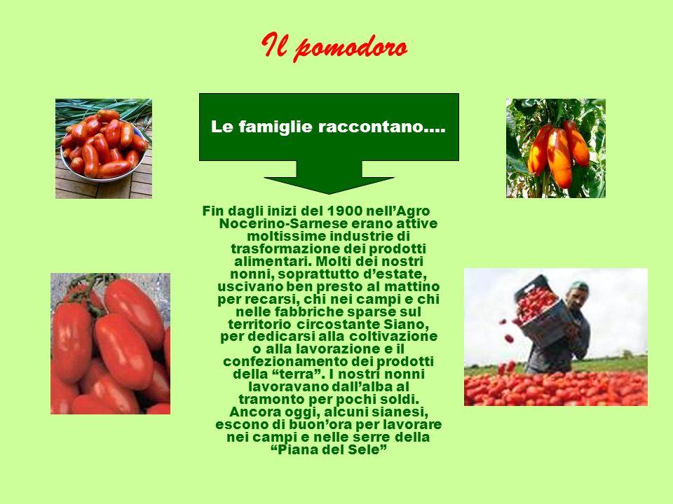 Il pomodoro Fin dagli inizi del 1900 nellAgro Nocerino-Sarnese erano attive moltissime industrie di trasformazione dei prodotti alimentari. Molti dei