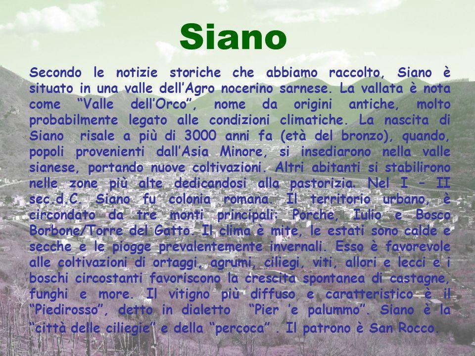 Secondo le notizie storiche che abbiamo raccolto, Siano è situato in una valle dellAgro nocerino sarnese. La vallata è nota come Valle dellOrco, nome