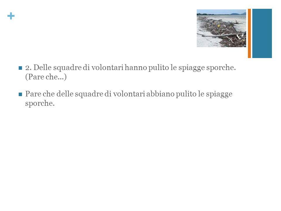 + 2. Delle squadre di volontari hanno pulito le spiagge sporche. (Pare che...) Pare che delle squadre di volontari abbiano pulito le spiagge sporche.