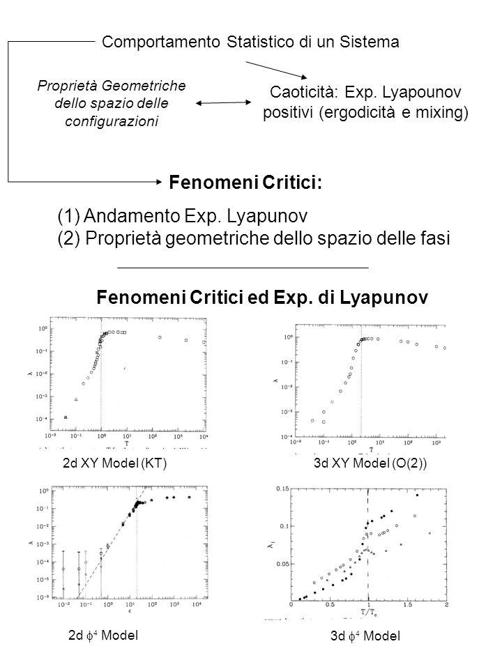 Comportamento Statistico di un Sistema Caoticità: Exp. Lyapounov positivi (ergodicità e mixing) (1) Andamento Exp. Lyapunov (2) Proprietà geometriche