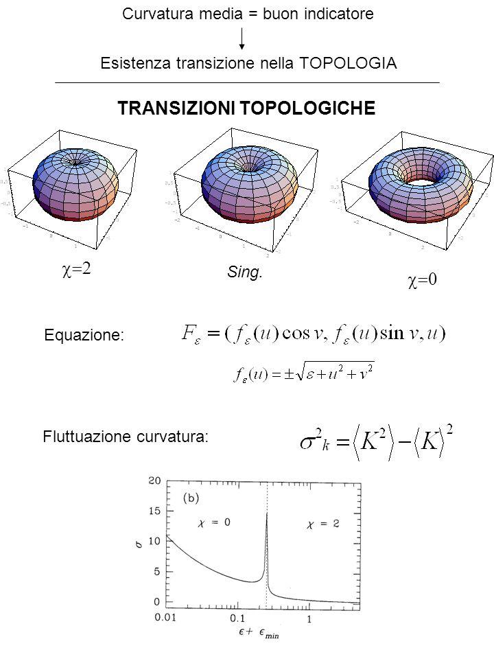 Curvatura media = buon indicatore Esistenza transizione nella TOPOLOGIA TRANSIZIONI TOPOLOGICHE Sing. Fluttuazione curvatura: Equazione: