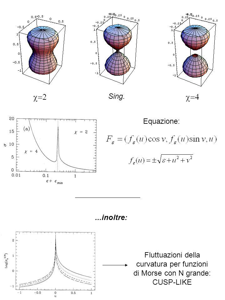 Sing. Equazione: Fluttuazioni della curvatura per funzioni di Morse con N grande: CUSP-LIKE...inoltre: