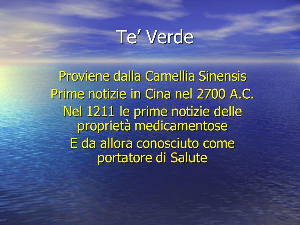 Te Verde Proviene dalla Camellia Sinensis Prime notizie in Cina nel 2700 A.C. Nel 1211 le prime notizie delle proprietà medicamentose E da allora cono