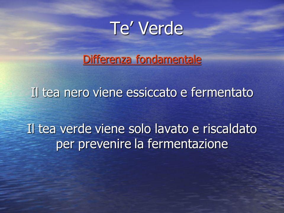 Te Verde Differenza fondamentale Il tea nero viene essiccato e fermentato Il tea verde viene solo lavato e riscaldato per prevenire la fermentazione