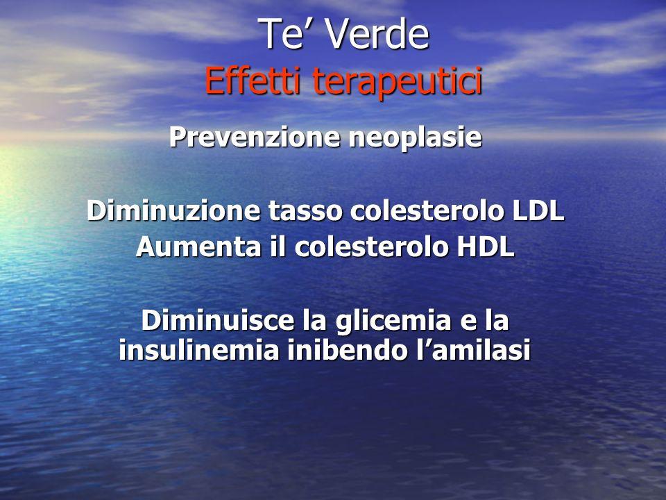 Te Verde Effetti terapeutici Prevenzione neoplasie Diminuzione tasso colesterolo LDL Aumenta il colesterolo HDL Diminuisce la glicemia e la insulinemi