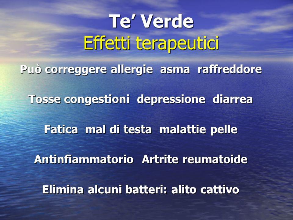 Te Verde Effetti terapeutici Può correggere allergie asma raffreddore Tosse congestioni depressione diarrea Fatica mal di testa malattie pelle Antinfi