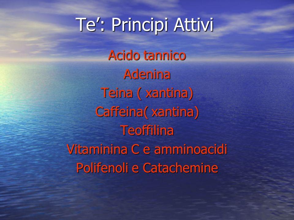 Te: Principi Attivi Acido tannico Adenina Teina ( xantina) Caffeina( xantina) Teoffilina Vitaminina C e amminoacidi Polifenoli e Catachemine