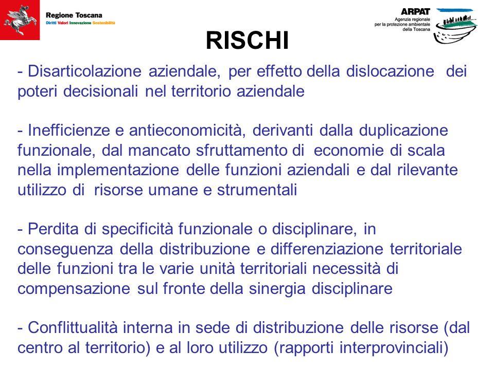 RISCHI - Disarticolazione aziendale, per effetto della dislocazione dei poteri decisionali nel territorio aziendale - Inefficienze e antieconomicità,