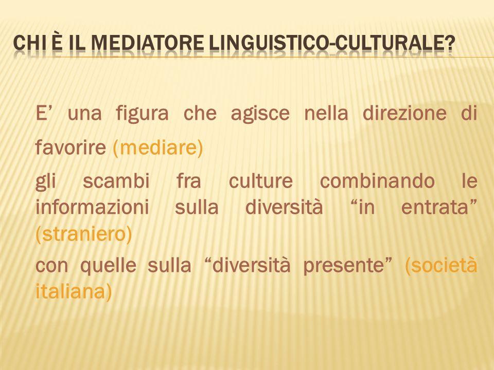 E una figura che agisce nella direzione di favorire (mediare) gli scambi fra culture combinando le informazioni sulla diversità in entrata (straniero)