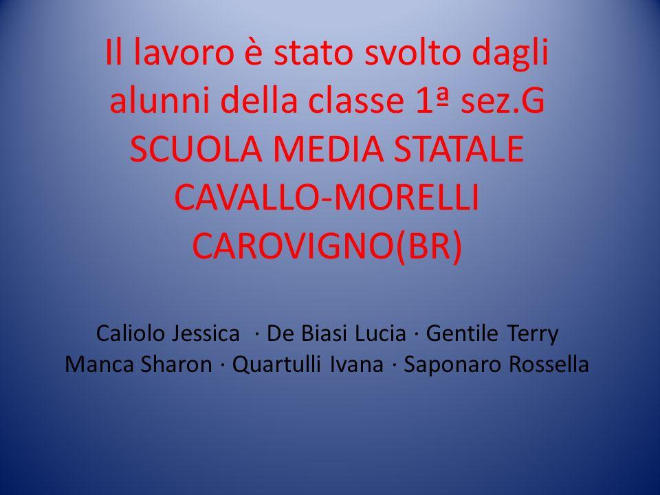 Il lavoro è stato svolto dagli alunni della classe 1ª sez.G SCUOLA MEDIA STATALE CAVALLO-MORELLI CAROVIGNO(BR) Caliolo Jessica · De Biasi Lucia · Gent