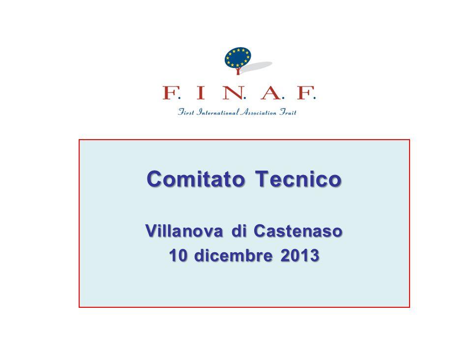 Comitato Tecnico Villanova di Castenaso 10 dicembre 2013