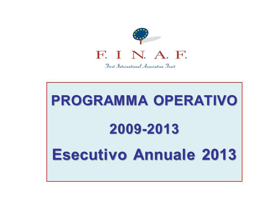 PROGRAMMA OPERATIVO 2009-2013 Esecutivo Annuale 2013