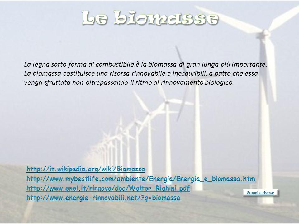 La legna sotto forma di combustibile è la biomassa di gran lunga più importante. La biomassa costituisce una risorsa rinnovabile e inesauribili, a pat