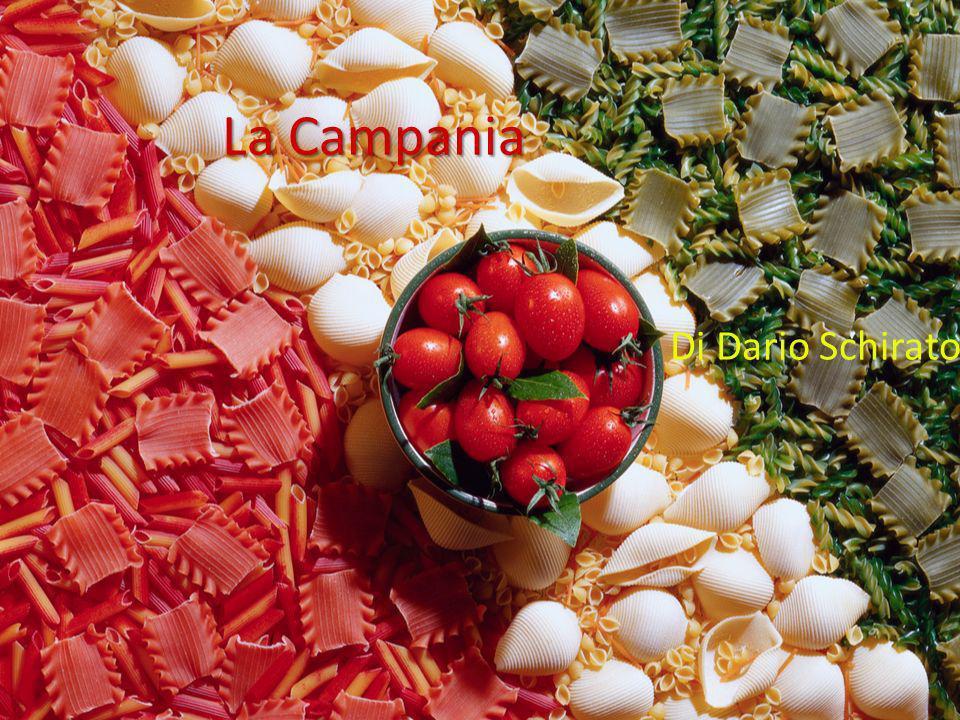 La Campania Era chiamata «felix campania» dai romani perché si riusciva a coltivare con un buon risultato, grazie alle ceneri espulse dal Vesuvio.