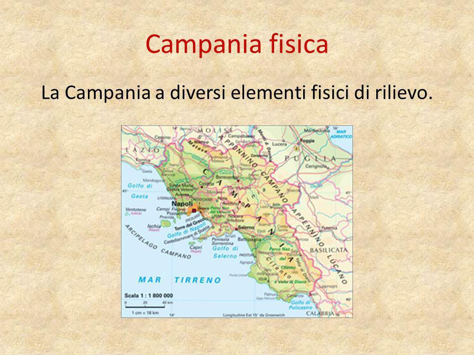 Il territorio È La Campania è una regione prevalentemente collinare.