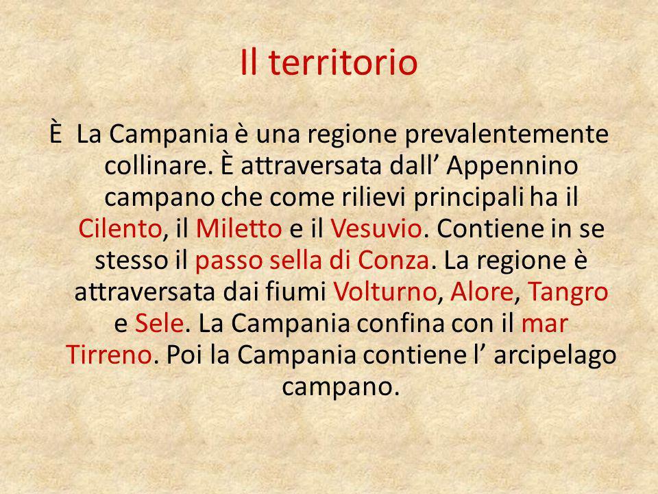 Il clima Nella Campania cè un clima mediterraneo tranne che sugli Appenini dove cè un clima più freddo.