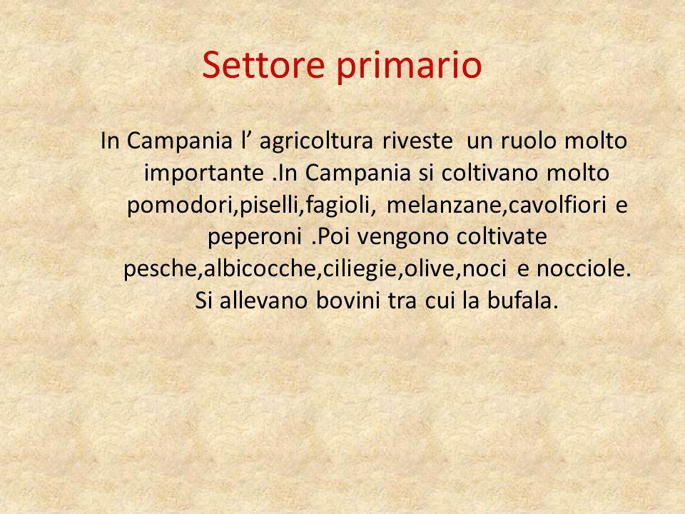 Settore secondario In Campania si è sviluppata molto l industria alimentare e conserviera.