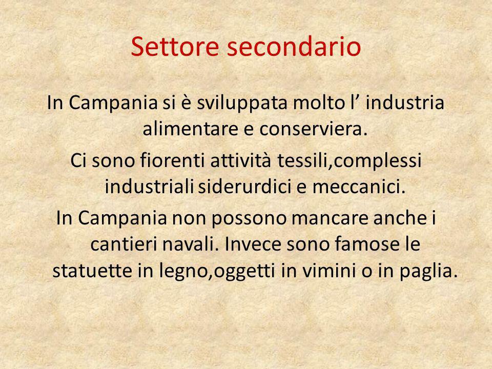 Settore terziario In Campania molte persone sono occupate nei servizi pubblici e nel turismo molto diffuso in Campania grazie agli splendidi paesaggi offerti dalla regione.