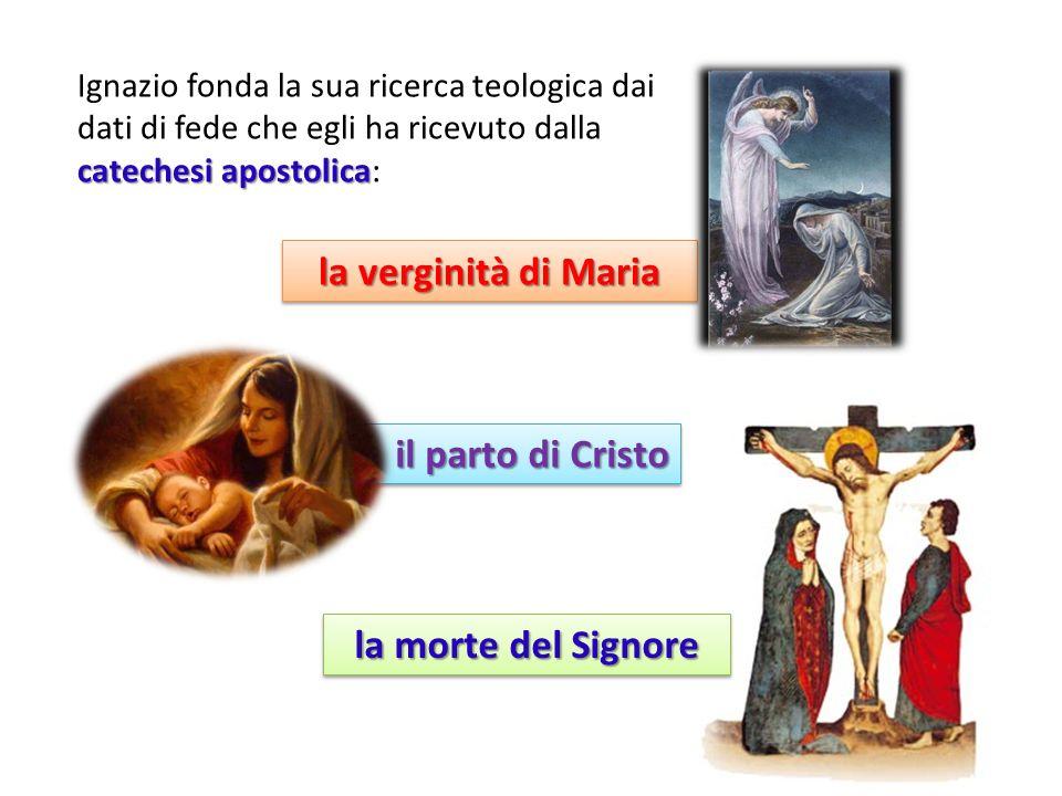 catechesi apostolica Ignazio fonda la sua ricerca teologica dai dati di fede che egli ha ricevuto dalla catechesi apostolica: la verginità di Maria il