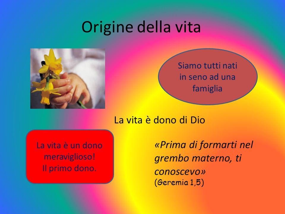Origine della vita Siamo tutti nati in seno ad una famiglia La vita è un dono meraviglioso! Il primo dono. «Prima di formarti nel grembo materno, ti c