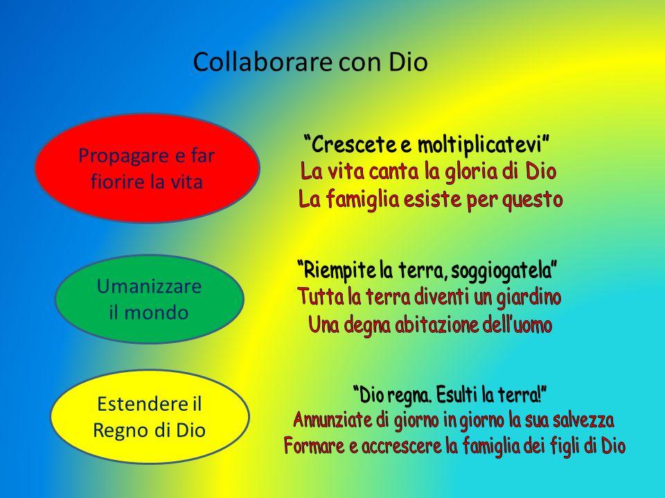 Collaborare con Dio Propagare e far fiorire la vita Umanizzare il mondo Estendere il Regno di Dio