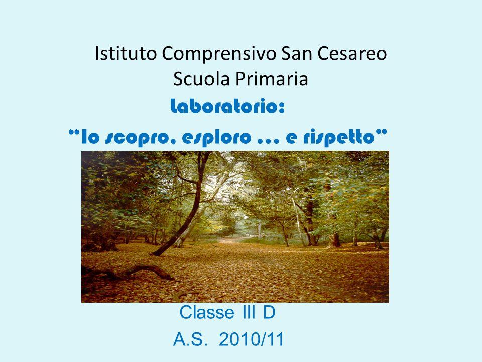 Istituto Comprensivo San Cesareo Scuola Primaria Laboratorio: Io scopro, esploro … e rispetto Classe III D A.S.