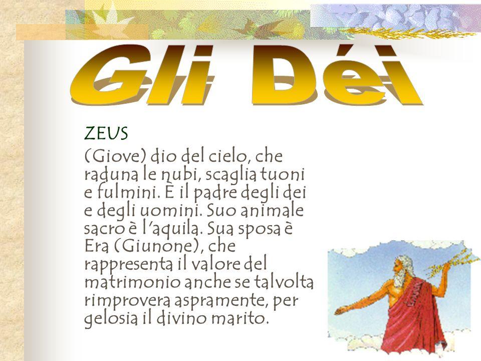 ZEUS (Giove) dio del cielo, che raduna le nubi, scaglia tuoni e fulmini. È il padre degli dei e degli uomini. Suo animale sacro è l'aquila. Sua sposa