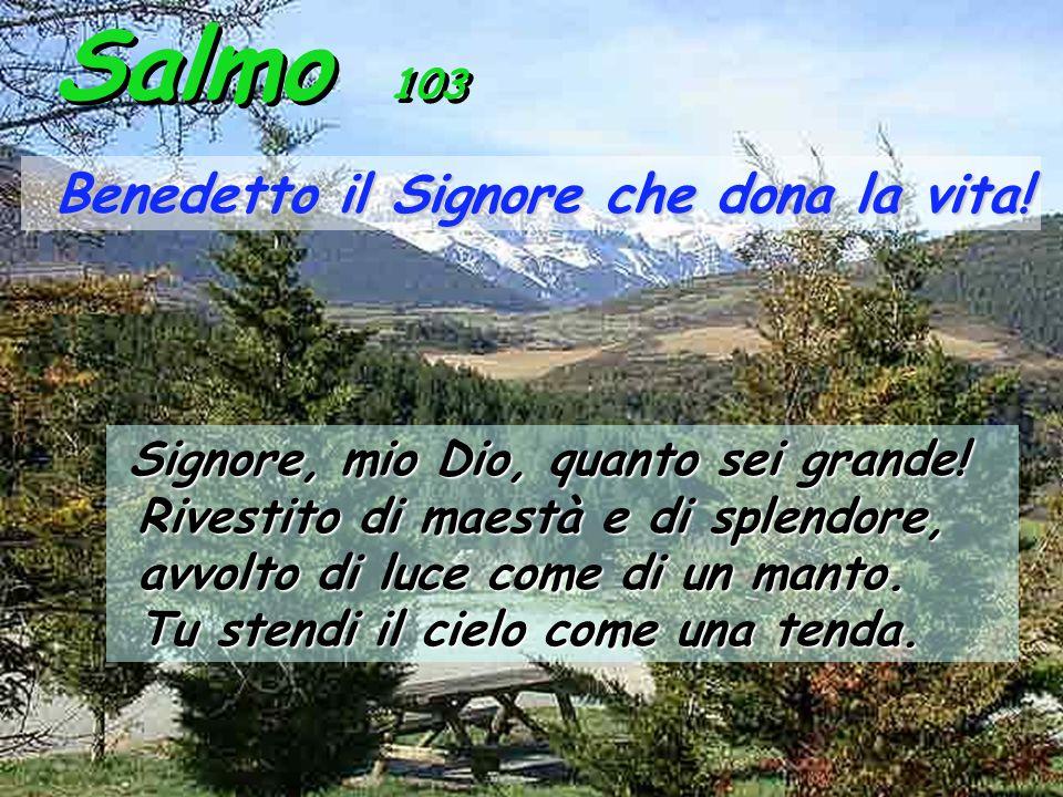 Salmo 103 Benedetto il Signore che dona la vita.Benedetto il Signore che dona la vita.