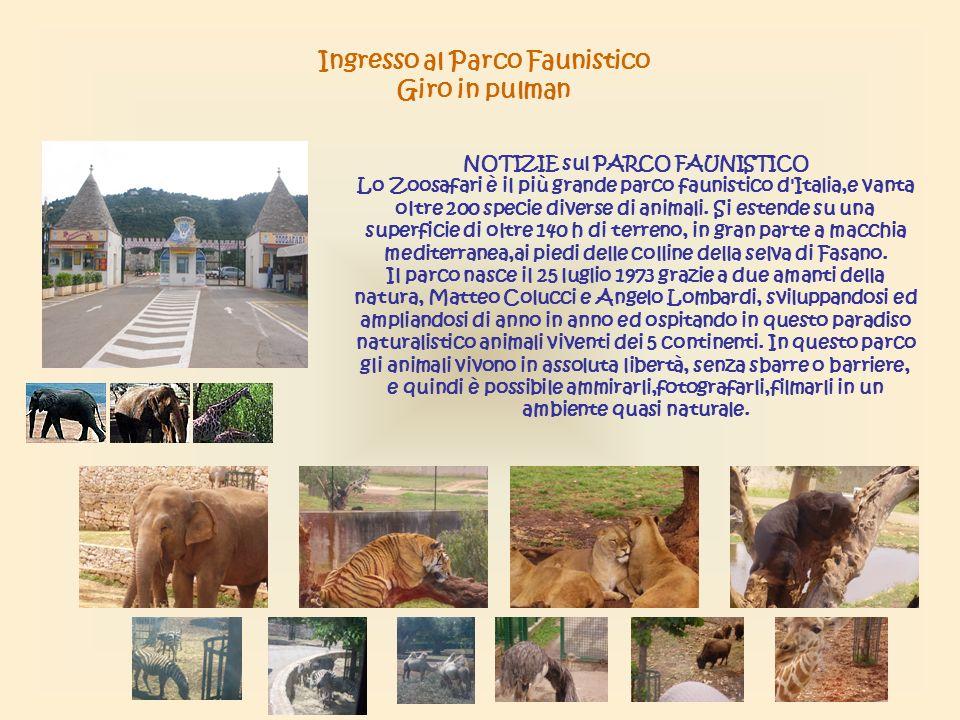 Ingresso al Parco Faunistico Giro in pulman NOTIZIE sul PARCO FAUNISTICO Lo Zoosafari è il più grande parco faunistico d Italia,e vanta oltre 200 specie diverse di animali.