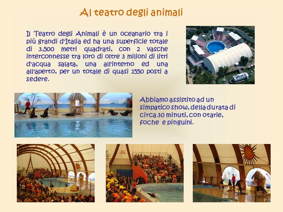 Il Teatro degli Animali è un oceanario tra i più grandi d Italia ed ha una superficie totale di 3,500 metri quadrati, con 2 vasche interconnesse tra loro di oltre 3 milioni di litri d acqua salata, una all interno ed una all aperto, per un totale di quasi 1550 posti a sedere.