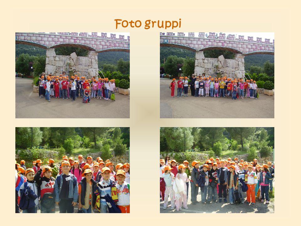 Foto gruppi