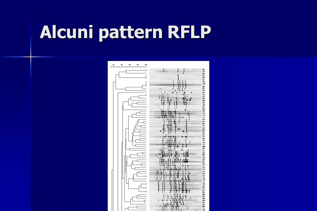 Alcuni pattern RFLP