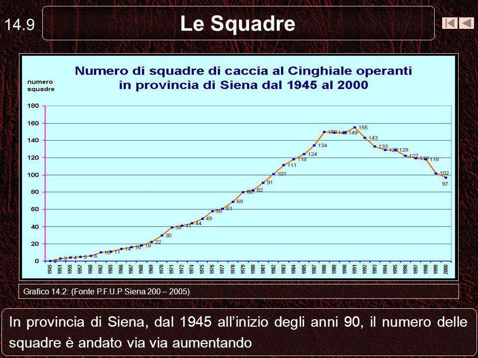 Le Squadre 14.9 Grafico 14.2: (Fonte P.F.U.P Siena 200 – 2005) In provincia di Siena, dal 1945 allinizio degli anni 90, il numero delle squadre è anda