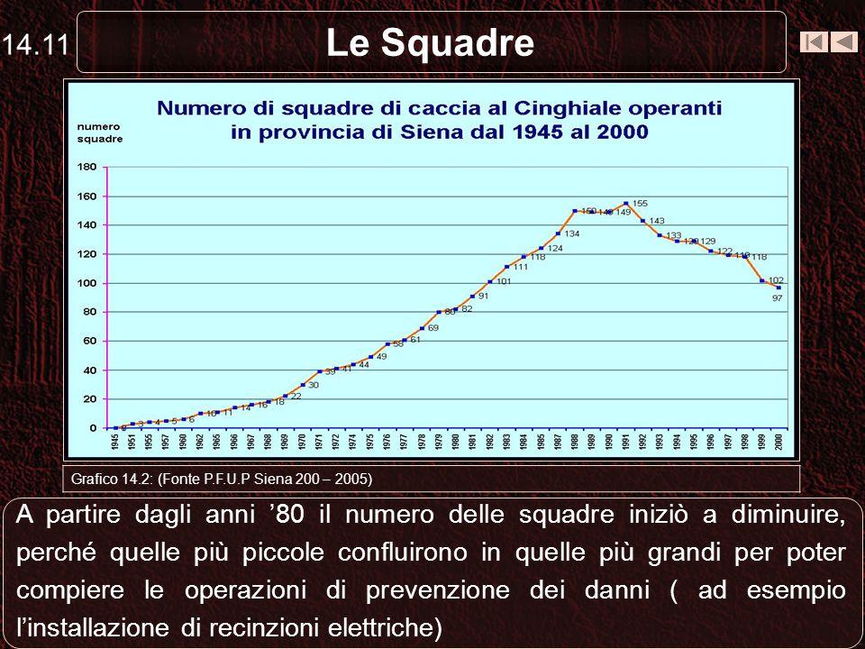 Le Squadre Grafico 14.2: (Fonte P.F.U.P Siena 200 – 2005) A partire dagli anni 80 il numero delle squadre iniziò a diminuire, perché quelle più piccol