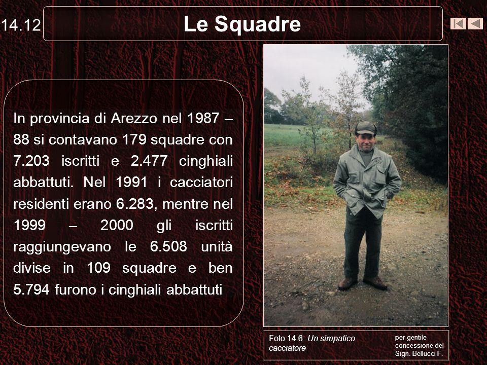 Le Squadre In provincia di Arezzo nel 1987 – 88 si contavano 179 squadre con 7.203 iscritti e 2.477 cinghiali abbattuti. Nel 1991 i cacciatori residen