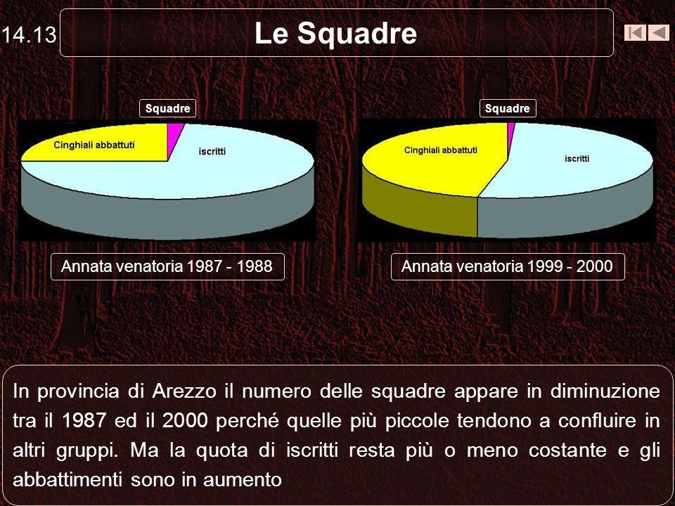 Le Squadre In provincia di Arezzo il numero delle squadre appare in diminuzione tra il 1987 ed il 2000 perché quelle più piccole tendono a confluire i