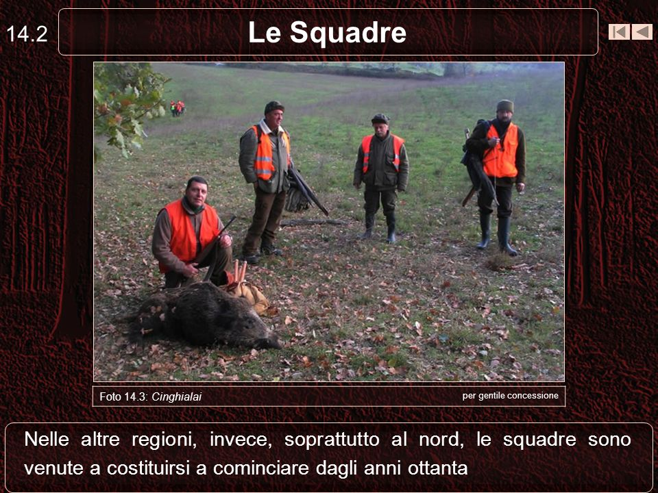 Le Squadre 14.2 Nelle altre regioni, invece, soprattutto al nord, le squadre sono venute a costituirsi a cominciare dagli anni ottanta Foto 14.3: Cing