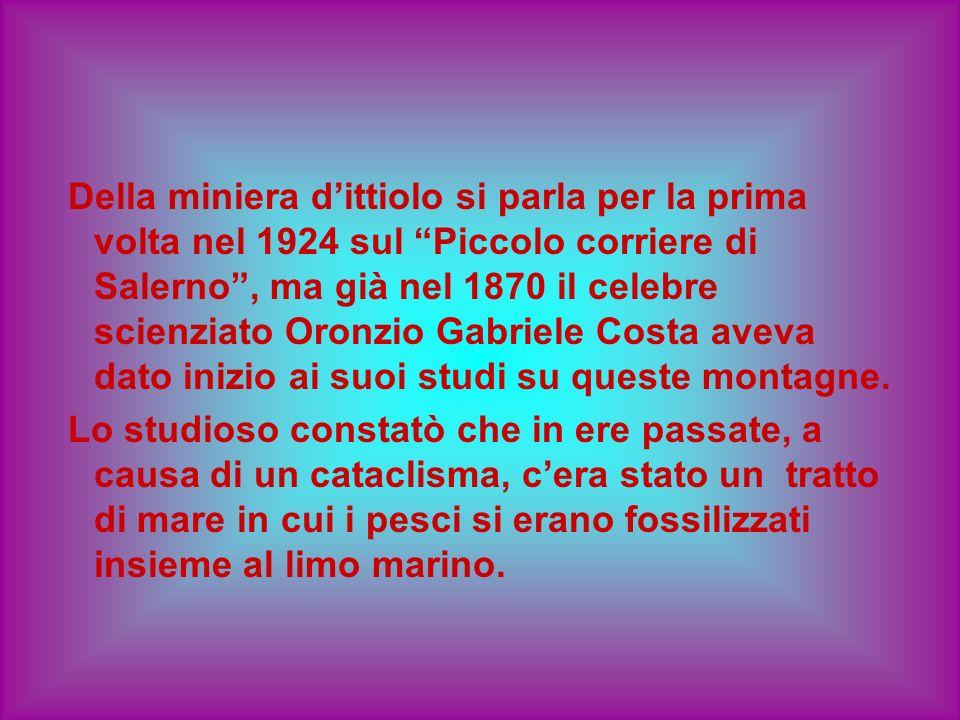 Della miniera dittiolo si parla per la prima volta nel 1924 sul Piccolo corriere di Salerno, ma già nel 1870 il celebre scienziato Oronzio Gabriele Co