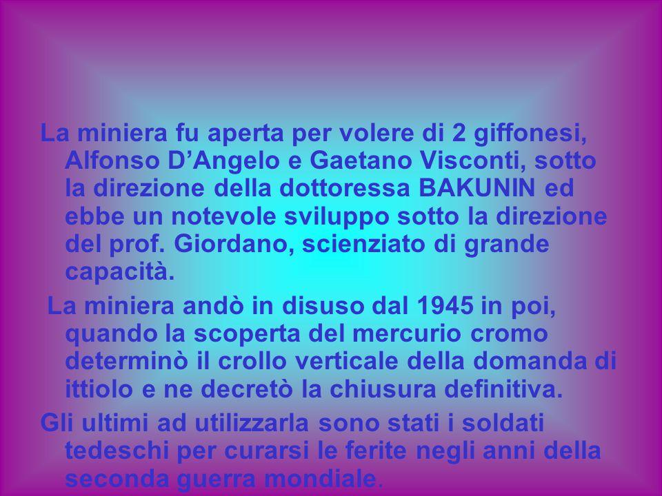 La miniera fu aperta per volere di 2 giffonesi, Alfonso DAngelo e Gaetano Visconti, sotto la direzione della dottoressa BAKUNIN ed ebbe un notevole sv