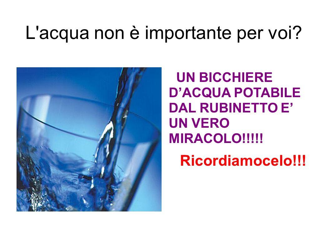 L'acqua non è importante per voi? UN BICCHIERE DACQUA POTABILE DAL RUBINETTO E UN VERO MIRACOLO!!!!! Ricordiamocelo!!!