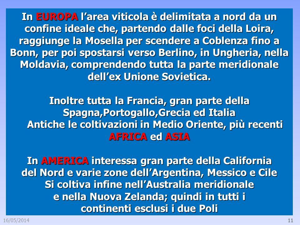 16/05/201411 In EUROPA larea viticola è delimitata a nord da un confine ideale che, partendo dalle foci della Loira, raggiunge la Mosella per scendere