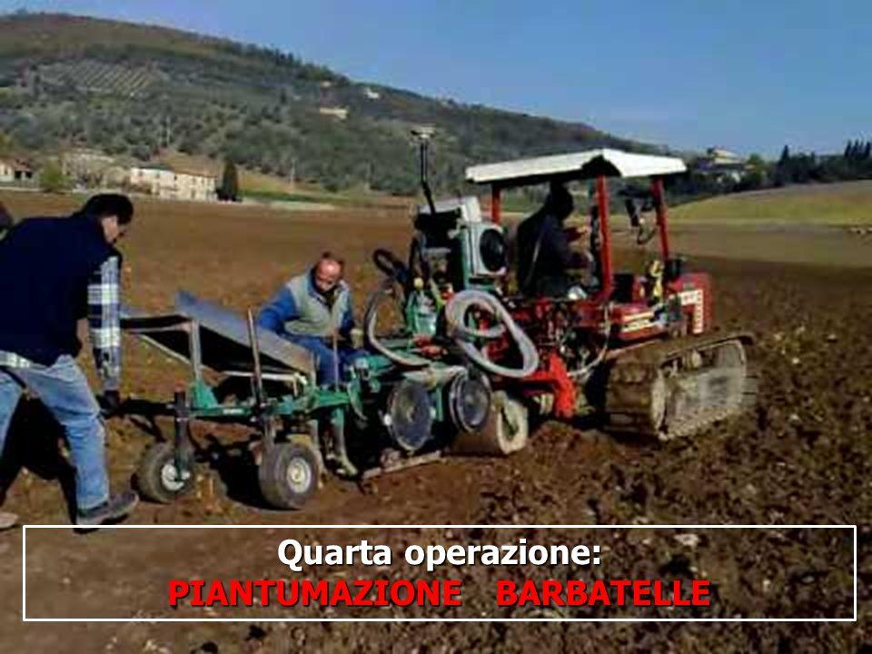 16/05/201416 Quarta operazione: PIANTUMAZIONE BARBATELLE