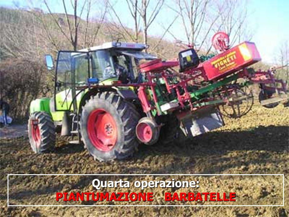 16/05/201417 Quarta operazione: PIANTUMAZIONE BARBATELLE