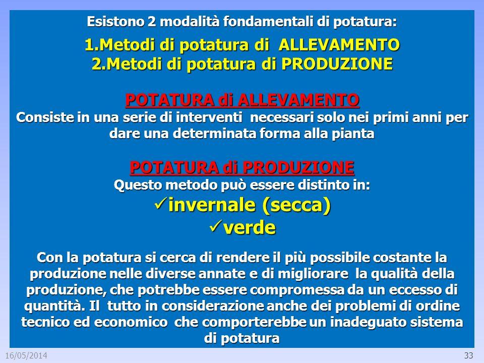 16/05/201433 Esistono 2 modalità fondamentali di potatura: 1.Metodi di potatura di ALLEVAMENTO 2.Metodi di potatura di PRODUZIONE POTATURA di ALLEVAME