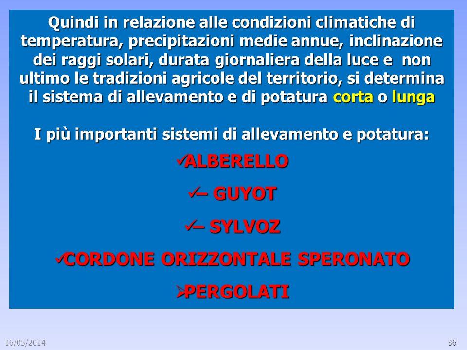 16/05/201436 Quindi in relazione alle condizioni climatiche di temperatura, precipitazioni medie annue, inclinazione dei raggi solari, durata giornali