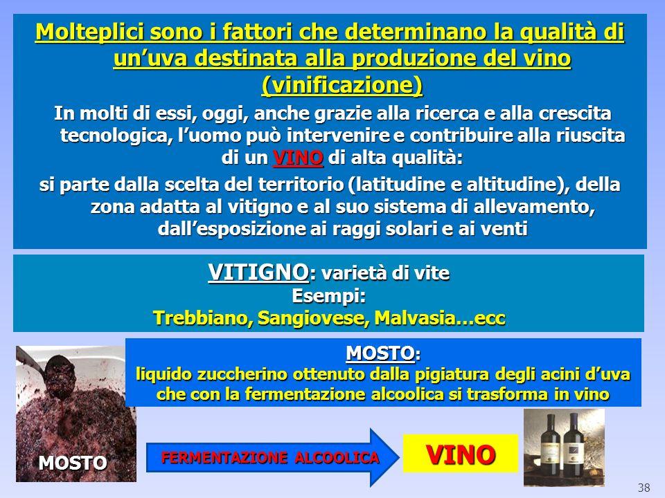 Molteplici sono i fattori che determinano la qualità di unuva destinata alla produzione del vino (vinificazione) In molti di essi, oggi, anche grazie